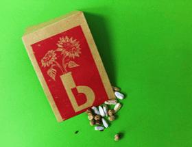 Seeds of Hope - Burton