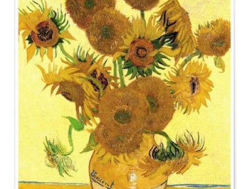 Seeds of Hope Sunflower Challenge